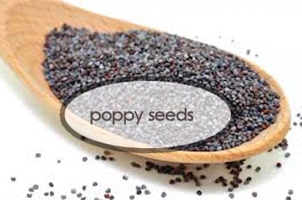 poppy-seed-benefits.the-good-stuff-botanicals-2-.jpg